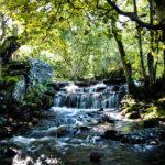 *Pen y Pigyn Waterfall