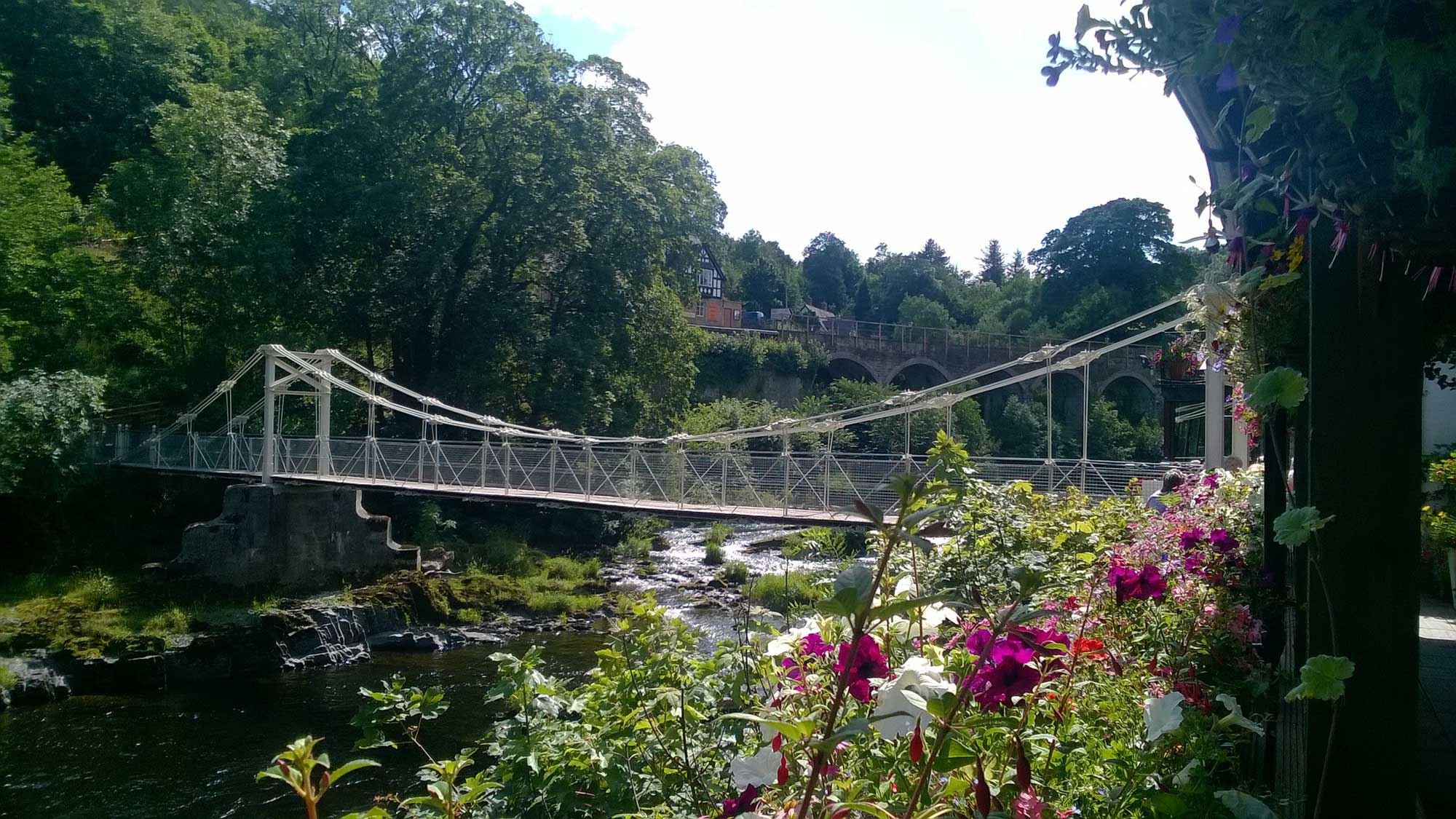 Chain Bridge in summer