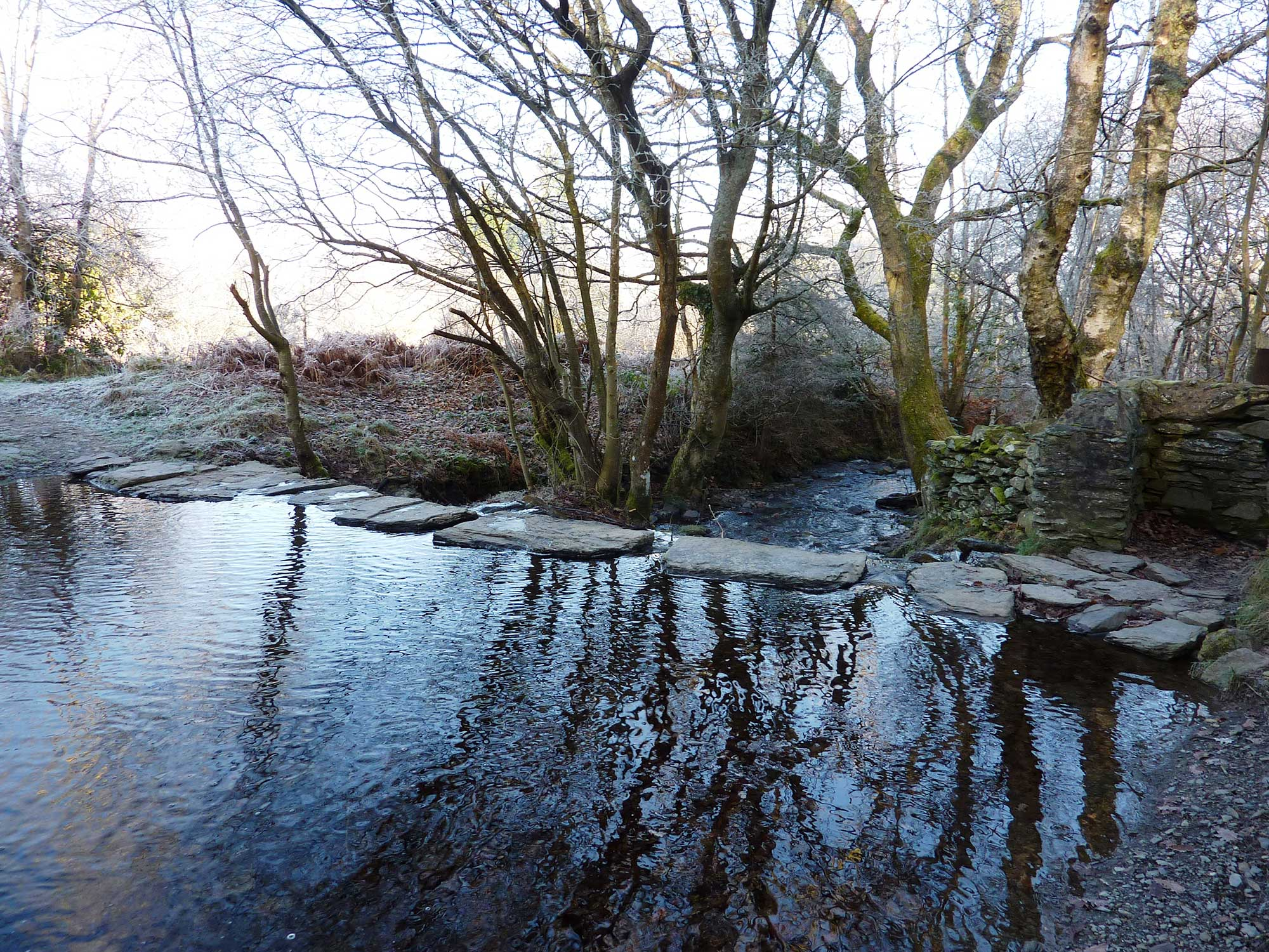 Stepping stones to Pen y Pigyn Wood