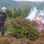 *Volunteers clearing invasive vegetation from the moorland